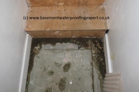 wet basement floor in converted cellar